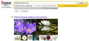 Yandex_Perevod