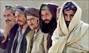 taliby